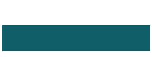 logo Wing Insurance - Bazzi & Partners International Partnership