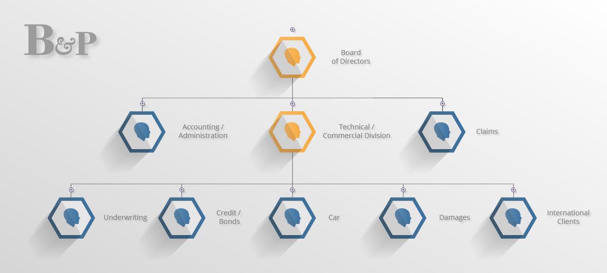 Organisational Structure - Bazzi & Partners